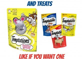 FREE Temptations Snacky Mouse Cat Toy (MIR Offer)